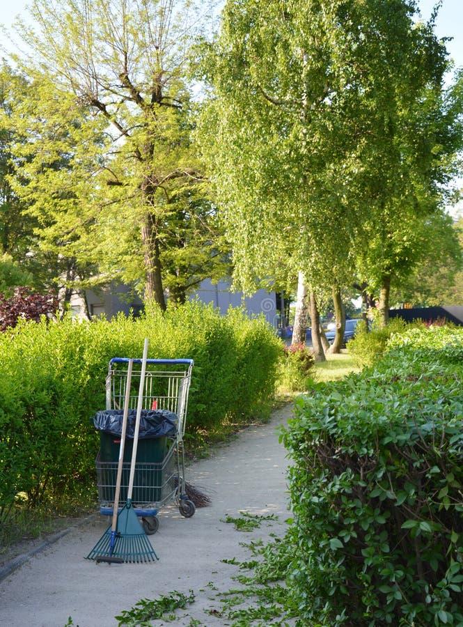 清洁和饰物灌木过程和设备 库存照片
