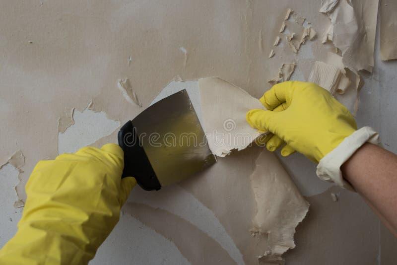 清洗墙壁从老墙纸 库存照片