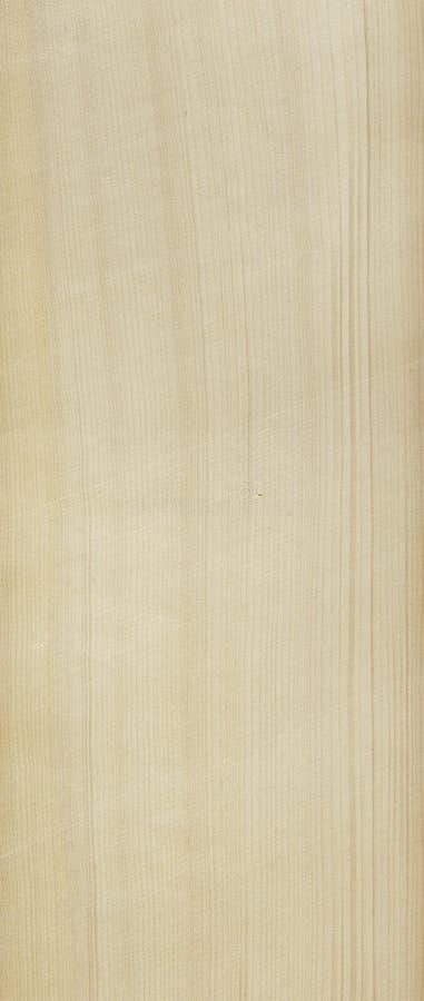 清洗模式云杉的木头 免版税库存照片