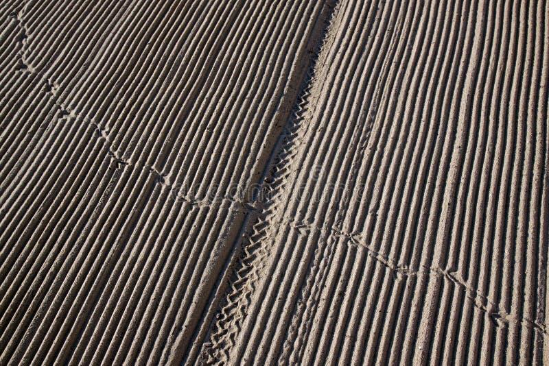 清洗由在地中海海滩的拖拉机沙子 图库摄影