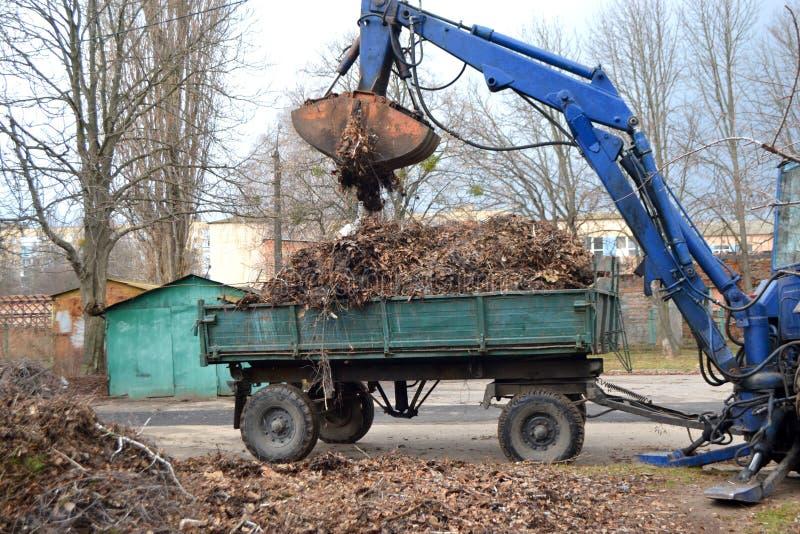 清洗的干燥分支和草在装载入卡车拖车的城市街道上 库存照片