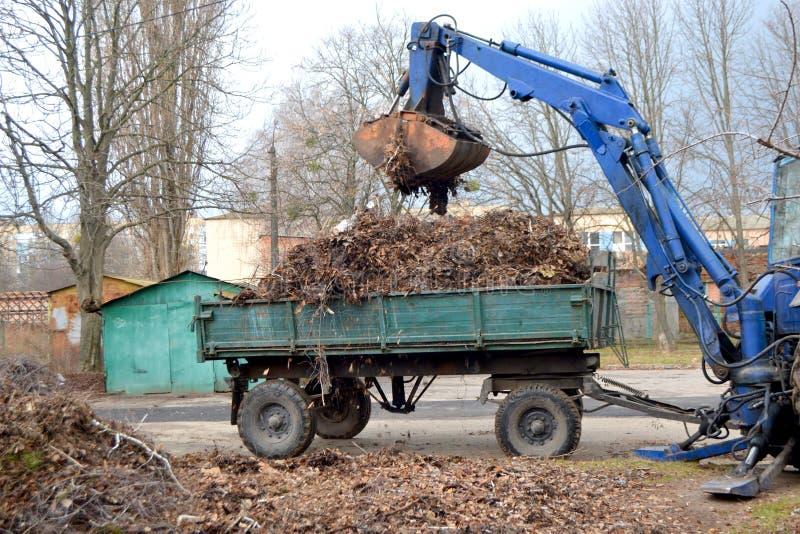 清洗的干燥分支和草在装载入卡车拖车的城市街道上 免版税库存照片