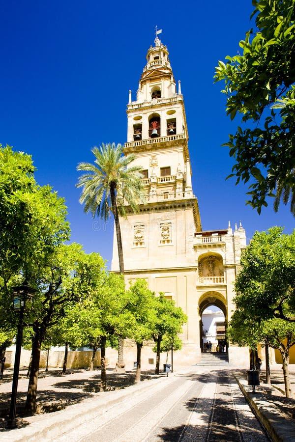 清真大寺尖塔塔从Patio de los Naranjos,Cordob的 库存图片