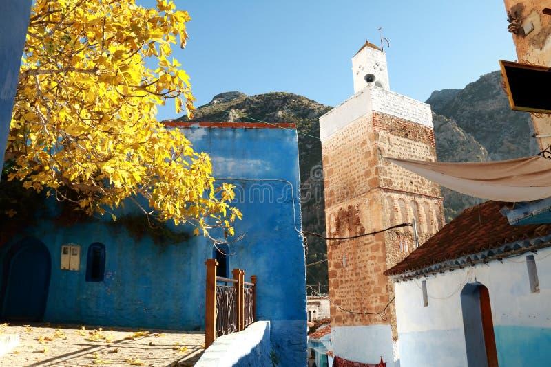 清真寺在村庄 免版税图库摄影