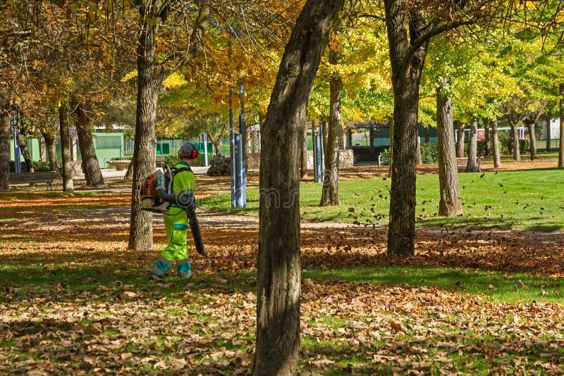 清除在公园的工作者秋叶 免版税库存图片