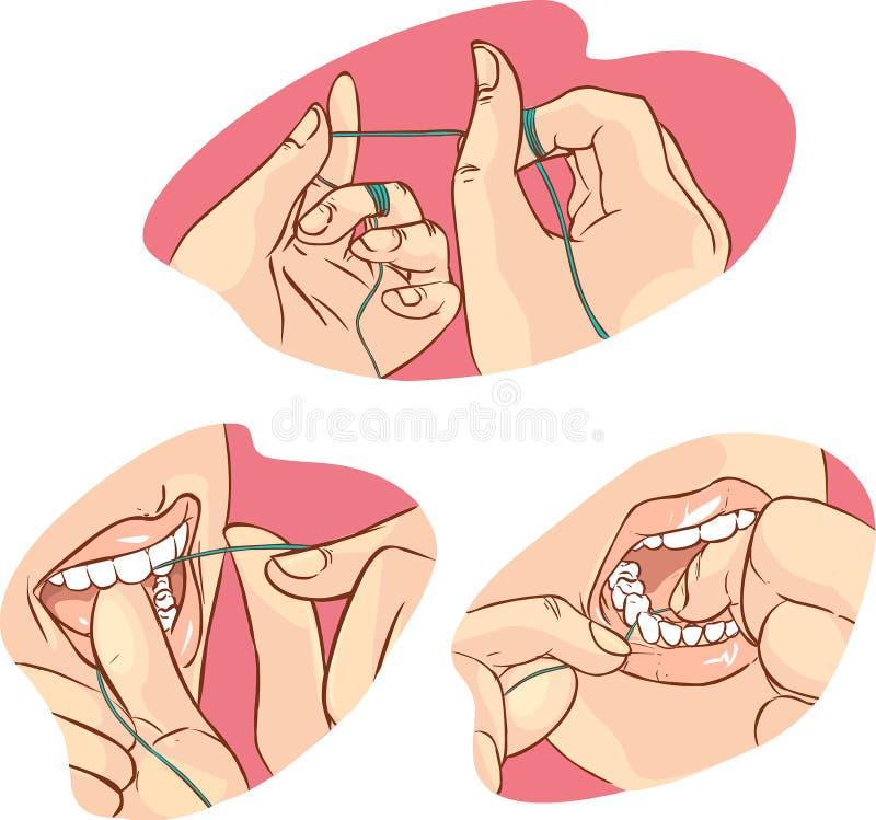 清洁牙齿的 皇族释放例证