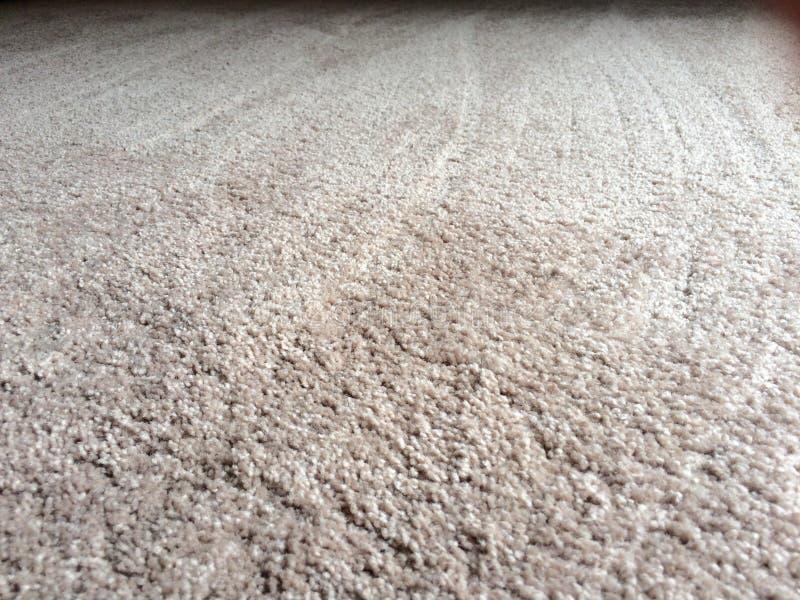 清洗长毛绒地毯地板 免版税库存照片