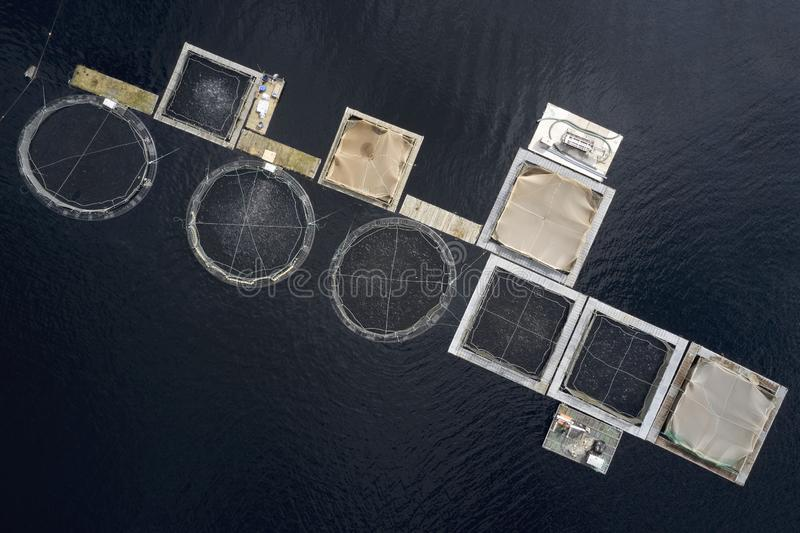 渔场三文鱼种田海上泰湖苏格兰英国的海网 免版税库存图片