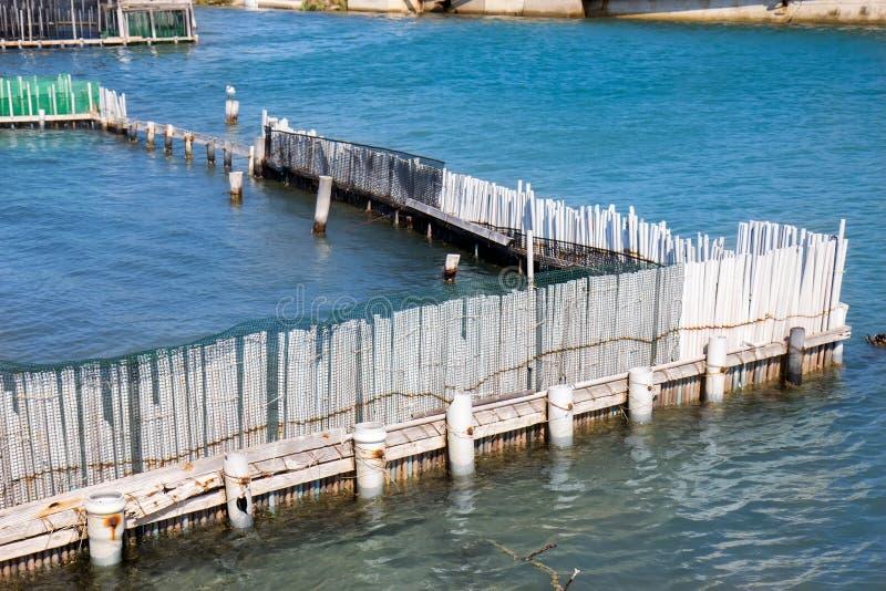 渔场和海鸥 免版税图库摄影
