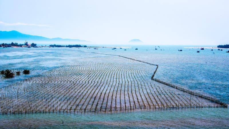 渔场在离桂海的海岸的附近在越南 免版税图库摄影