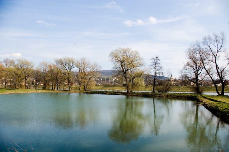 渔场池塘 库存图片
