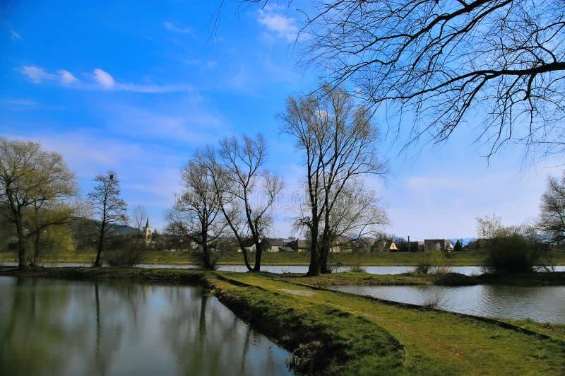 渔场池塘 图库摄影