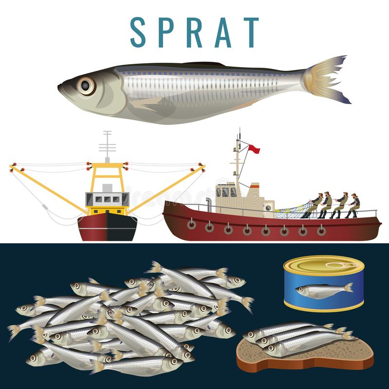 渔场集合传染媒介 皇族释放例证
