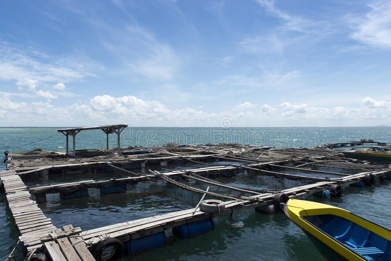 渔场 免版税库存照片
