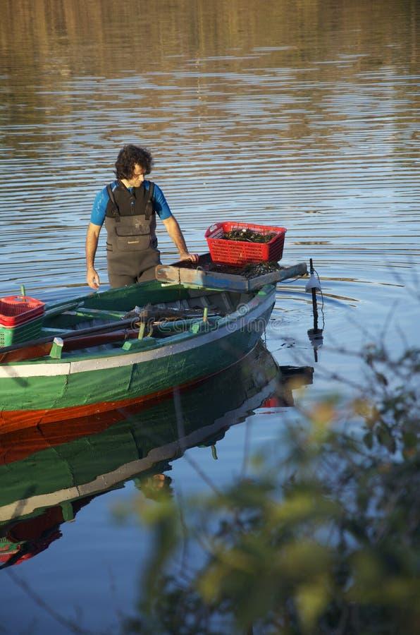 渔夫传染性的淡菜在Ganzirri湖  图库摄影