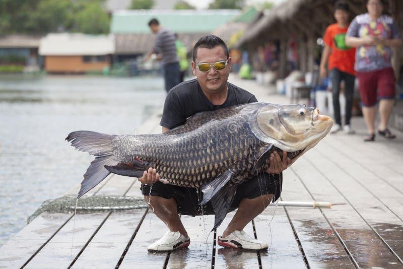 渔夫在Bungsamran渔公园拿着一个巨型鲶鱼 图库摄影