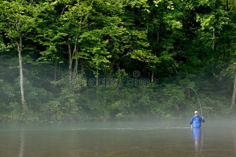 渔夫用假蝇钓鱼在一条有薄雾的河 免版税库存照片