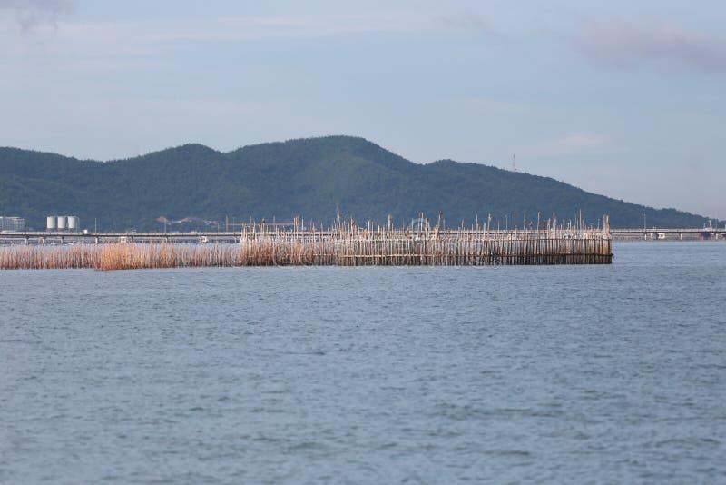 渔工具由竹子制成在泰国海 免版税库存图片