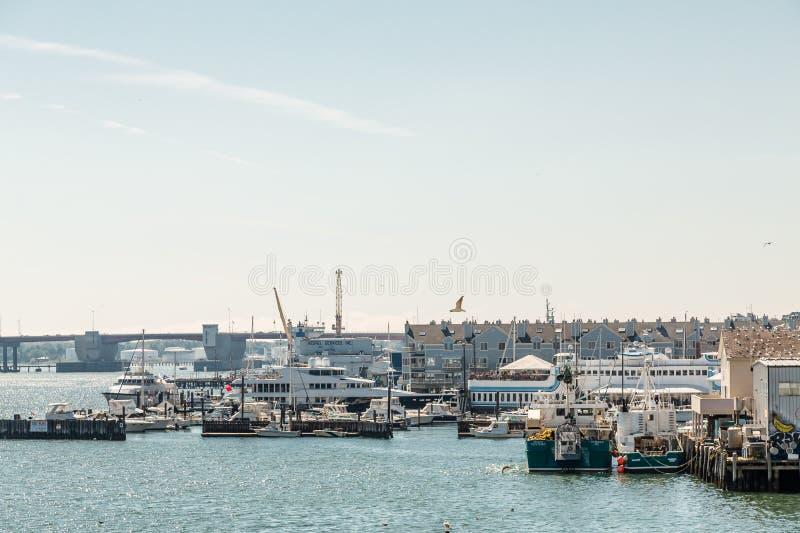 渔船和游艇在波特兰 库存图片