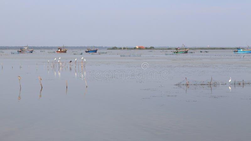渔船和盐水湖贾夫纳-斯里兰卡的 库存图片