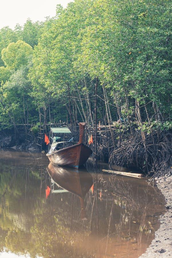 渔船在海和泰国的美洲红树森林 库存照片