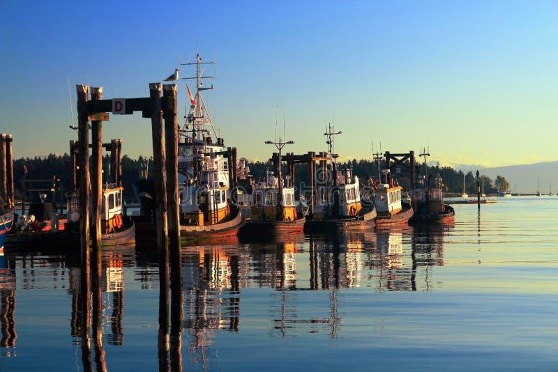 渔船在清早光的,温哥华岛,加拿大纳奈莫港口 免版税图库摄影