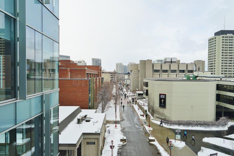 渥太华大学,加拿大的校园 库存图片