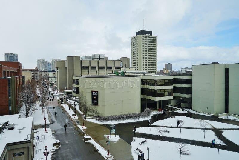渥太华大学,加拿大的校园 图库摄影