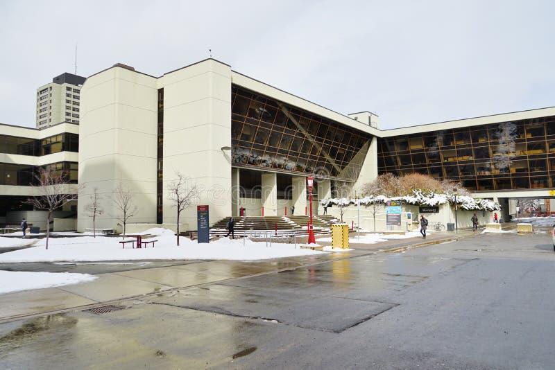 渥太华大学,加拿大的校园 免版税库存图片
