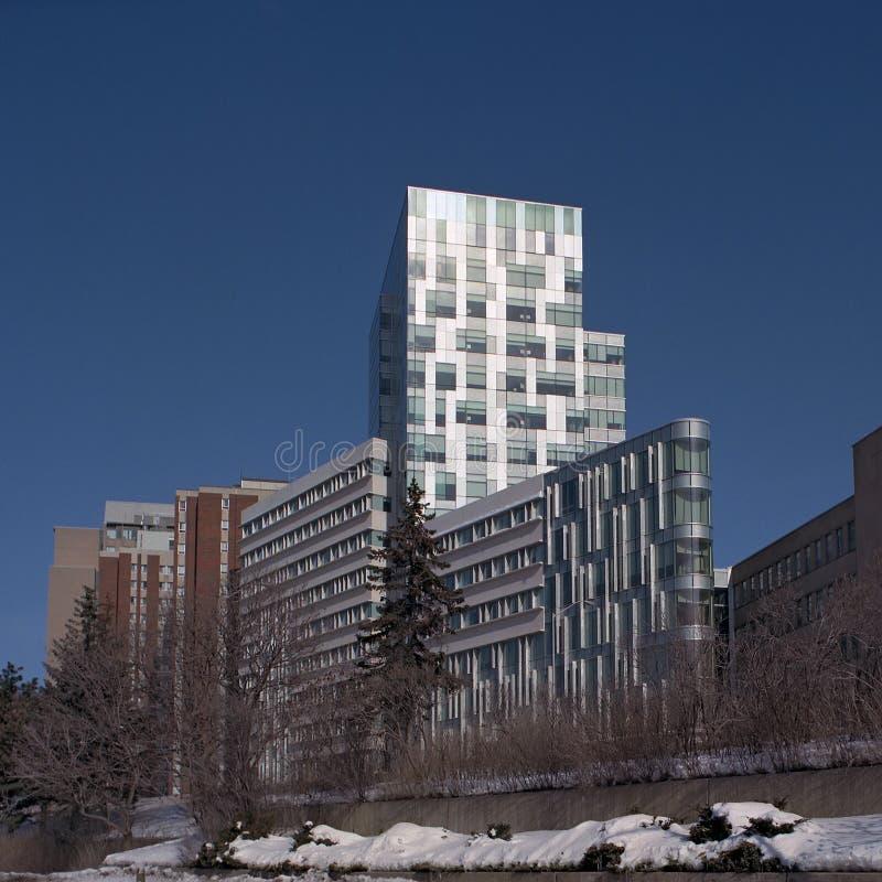 渥太华大学 库存照片
