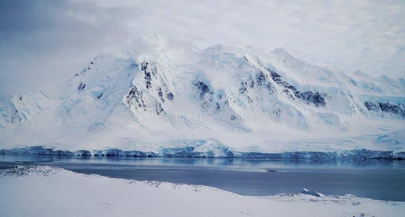 温克岛/多利安人的海湾风景与多雪的山在南极洲 免版税库存照片