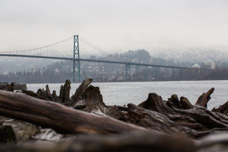 温哥华不列颠哥伦比亚省漂流木头海滩俯视的桥梁地平线 免版税库存图片