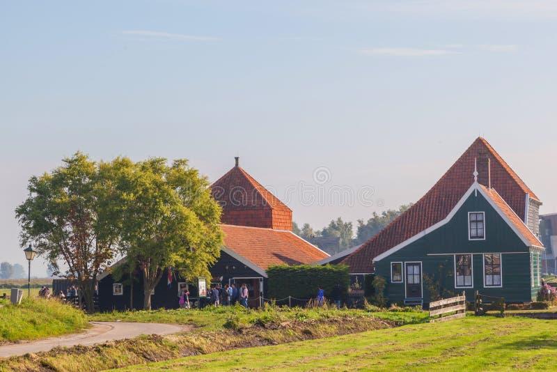 温室在Zaanse的Schans小典型的荷兰村庄 库存照片