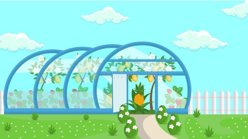 温室热带水果耕种例证 向量例证
