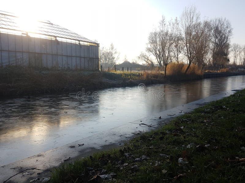 温室荷兰 库存图片