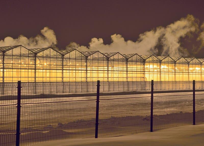 温室行在冬天晚上 免版税库存图片