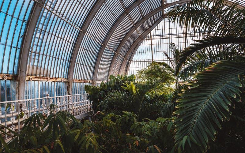 温室,基奥庭院在冬天/秋天 免版税库存照片
