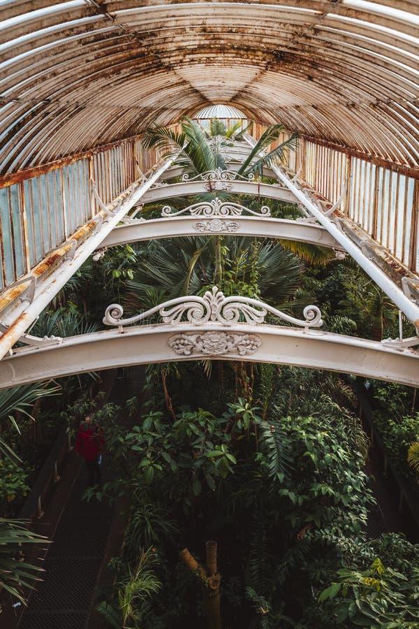 温室,基奥庭院在冬天/秋天 免版税库存图片