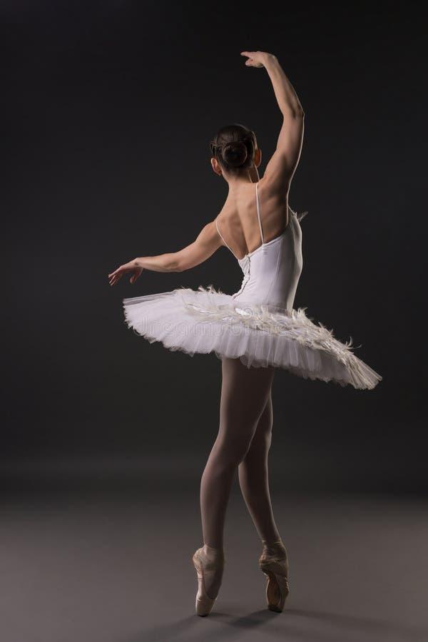 温文地跳舞后视图的美丽的芭蕾舞女演员 库存图片