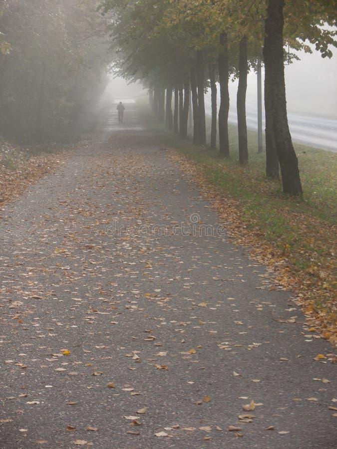 温暖和发光的秋天天 免版税库存照片