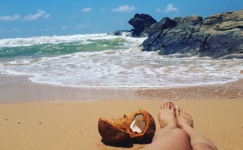 温暖的沙子大海印度洋 库存照片