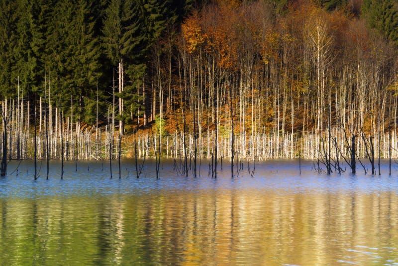 温暖的颜色的Autumn湖 图库摄影