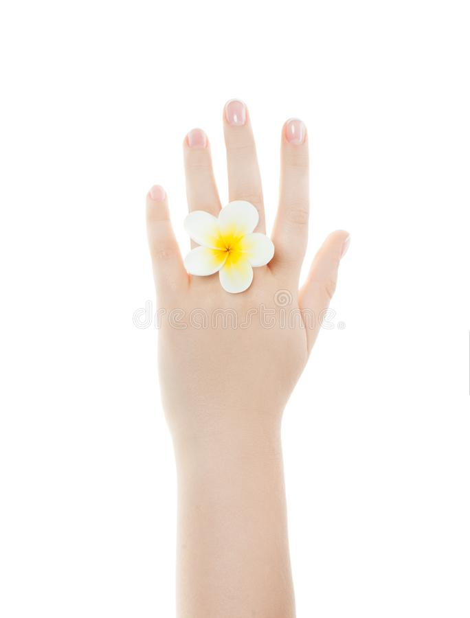 温泉修指甲概念 有完善的钉子的美好的妇女手 免版税库存图片