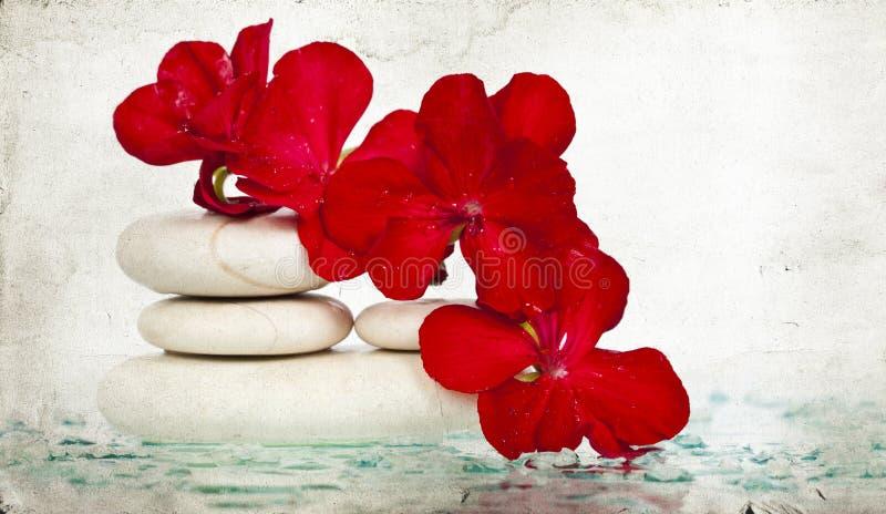 温泉石头和红色花 库存图片