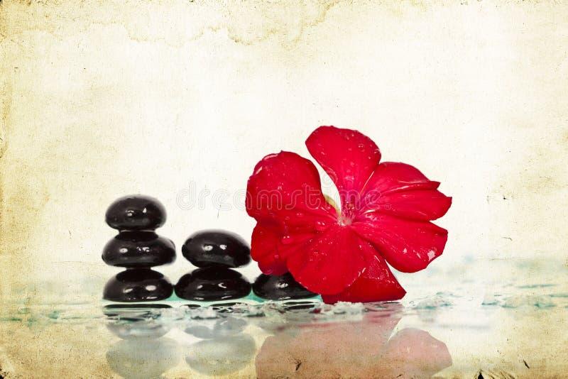 温泉石头和红色花 免版税库存照片