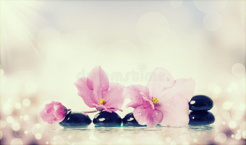黑温泉石头和花在五颜六色的背景 库存图片