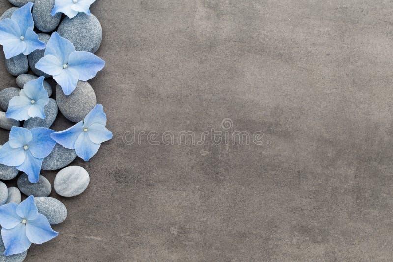 温泉石头和花在灰色背景 免版税库存照片