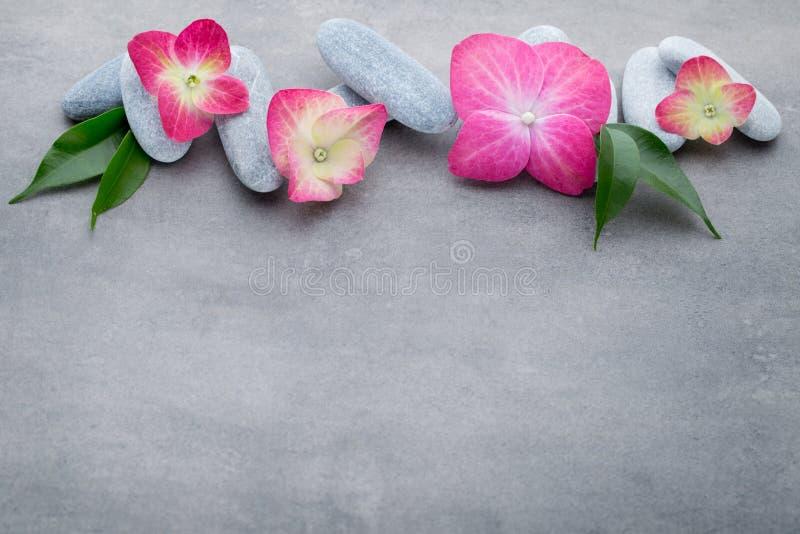 温泉石头和花,在灰色背景 免版税库存图片