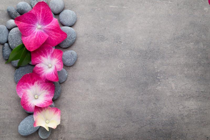 温泉石头和花,在灰色背景 图库摄影