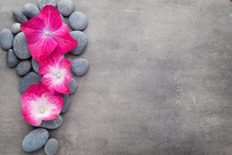 温泉石头和花,在灰色背景 免版税库存照片